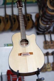 Đàn guitar các loại