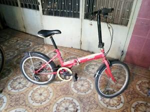 Xe đạp sếp hàng nghĩa địa