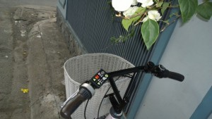 Xe đạp trợ lực Nhật: Pas Ami
