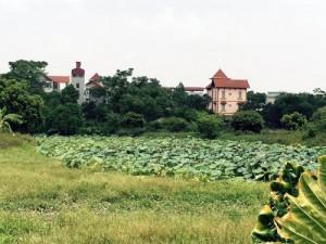 Cần bán lô đất công 24000 m2 Cồn Khương Ninh Kiều Cần Thơ
