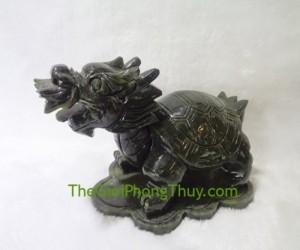 Rùa đầu rồng lam ngọc trung FH065