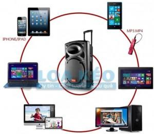 Loa được thiết kế nhỏ gọn, độc đáo, tay xách và tay kéo bánh xe như một chiếc vali, với các tính năng: Hát Karaoke không dây ngoài trời, phát nhạc bằng thẻ nhớ, USB,...