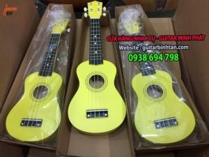 Địa chỉ mua đàn ukulele uy tín tại Tphcm | đàn ukulele giá rẻ