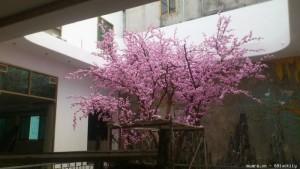 Cây anh đào giả hcm, cây đào giả, cây hoa giả, cây giả tphcm