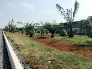 Bán đất nền dự án Vista Land phía Tây Bắc