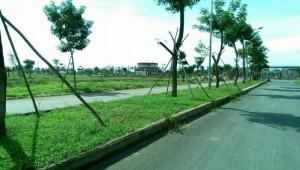 Đất nền sinh thái sổ đỏ gần chợ Bình Chánh chỉ với giá 9,9 triệu/m2