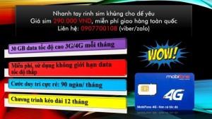 Sim 4g mobi data khủng có sẵn 30gb data (phí duy trì mỗi tháng 90k được 30gb tốc độ cao)