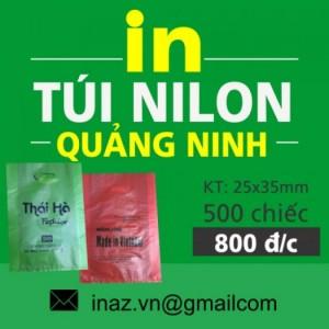 In túi nilon tại Quảng Ninh