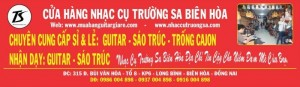 Hướng dẫn cách chọn đàn guitar Tốt nhất, Guitar giá rẻ nhất biên hòa đồng nai