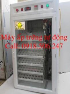 Cơ sở sản xuất máy ấp trứng tự động