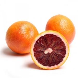 Cây giống cam máu nhập khẩu.