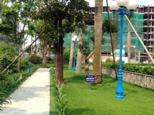 Bán đất nền dự án Khu đô thị Petro Thăng Long giai đoạn 2