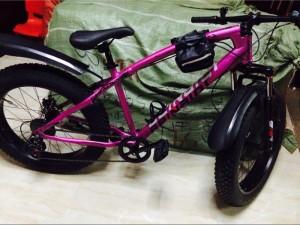 Xe đạp bánh to