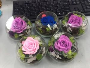 Hoa hồng bất tử giá rẻ -  Hoa hồng thật tươi 5 năm - Sỉ lẻ toàn quốc