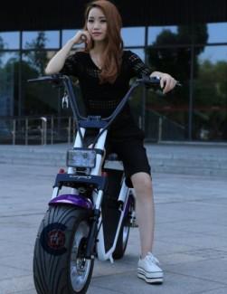 Xe điện Harley Caigiees bánh to