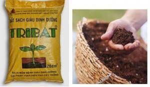 Đất sạch trồng rau Tribat - Giúp cho cây sinh trưởng và phát triển toàn diện