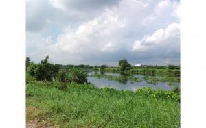 Đất thổ cư 5x36, MT Sông Vàm Thuật, P. An Phú...