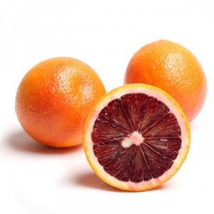 Chuyên cung cấp cây giống cam máu, cam kết chuẩn giống, số lượng lớn.