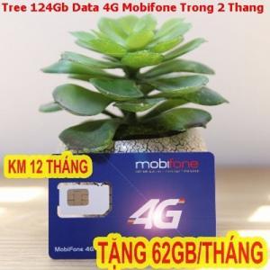 Sim 3G.4G Mobifone tặng 124GB data tốc độ cao 2 tháng