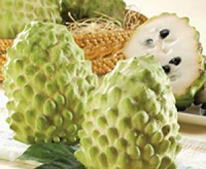 Cây giống an bở Đài Loan, na bở nhập khẩu, số lượng lớn, giao cây toàn quốc.
