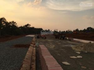Hình ảnh dự án