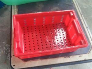 Thùng nhựa đựng cá - khay cá - kết cá Việt Nhật giá rẽ chất lượng tốt