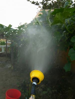 sử dụng 1 chiếc bes tưới có điều chỉnh rất phù hợp với loại máy bơm này