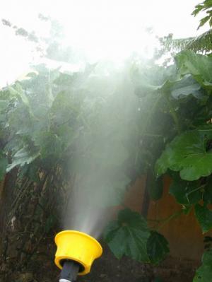 phun nước từ bes phun rất mạnh