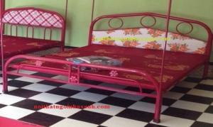 Giường sắt đơn ngang 1m6 dài 2m. Giá...