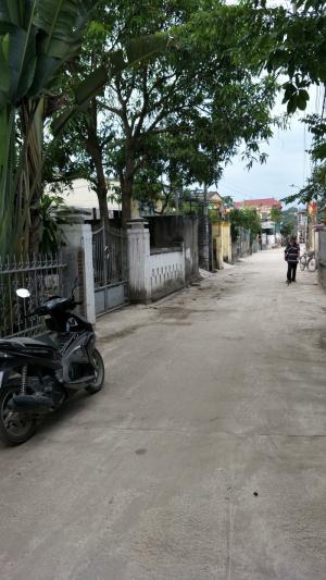 284m2 đất thổ cư đường Bùi Thị Xuân gần UBND phường Đúc