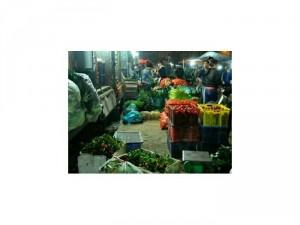 Cung cấp các mặt hàng rau củ quả