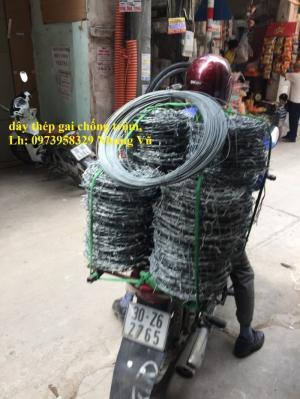 Dây Thép Gai , Chống Trộm, dây thép gai hình giao - Giá rẻ dọn kho về ăn tểt