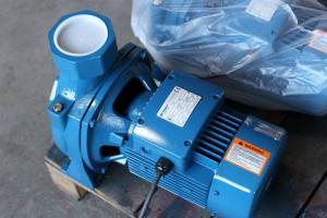 Máy bơm nước tưới cây giá rẻ Purity MHF 5BM 1.5HP