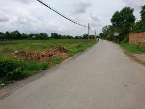 Bán đất tại Đường Bùi Văn Sự, Bình Chánh, Hồ...