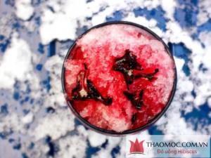 Nước cốt kèm đài hoa Hibiscus - Atiso đỏ - Bụp giấm