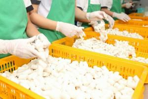 Tìm đại lý, đối tác phân phối bánh gạo hàn quốc và tương ớt hàn quốc.