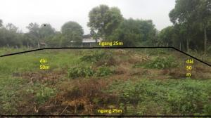 Đất 25m x 50m đường 121 Ấp Phú Hiệp Xã Phú...