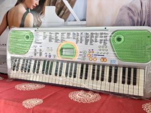 Đàn Organ Casio LK-101