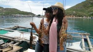 Đảo quốc tôm hùm - nha trang  – bbq hải sản 3n3đ