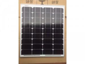 Pin mặt trời 50w