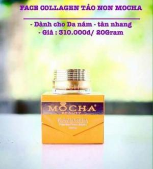 Hết Sạch Nám - Tàn Nhang với Kem trị nám của Mocha
