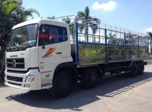 Xe tải Dongfeng 4 chân 2017 hoàng huy