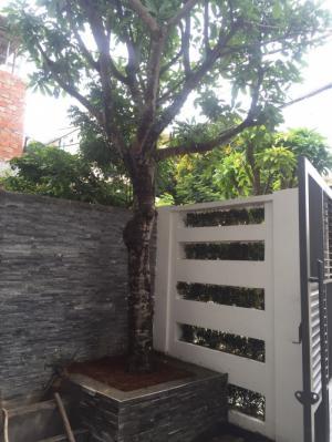 Bán Nhà ven cầu Tiên Sơn có 3PN, 2WC, P.SHC, DT 90m2, Giá LH