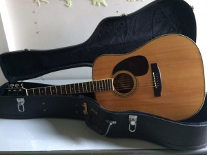 Guitar Morris w35