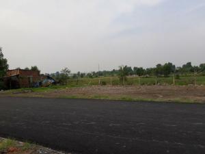 Đất Thạnh Phú chính chủ gần công ty Changshin