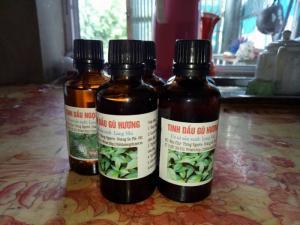Tinh dầu gù hương