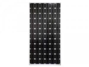 Pin mặt trời 100w