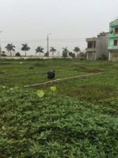Bán đất gần trường Đại học công nghiệp Hà Nam