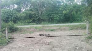 Đất 5,5m x 60m ,có 250 m2 thổ cư đường nhựa Bà Thiên Xã Nhuận Đức ,Củ Chi