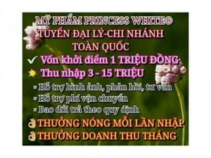 Tuyển Chi Nhánh, Khách sỉ, Npp, Đại Lí, Ctv.